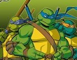 忍者神龟 11