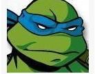 忍者神龟 28