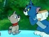 猫和老鼠四川方言版 18