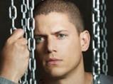 点击观看《越狱第一季 22》