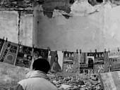 点击观看《《流亡的故城》完整高清版》